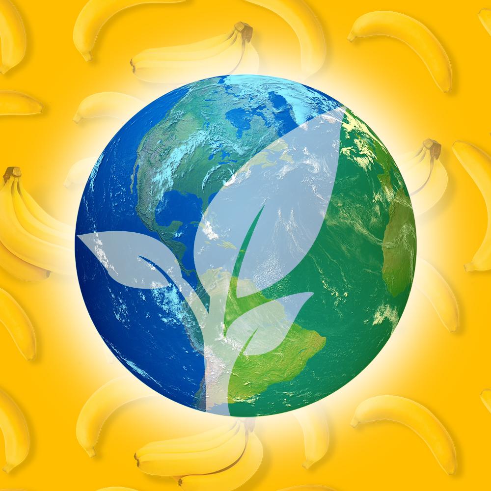 Banana APU Environmental image